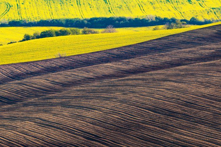 مميزات الزراعة فى تركيا